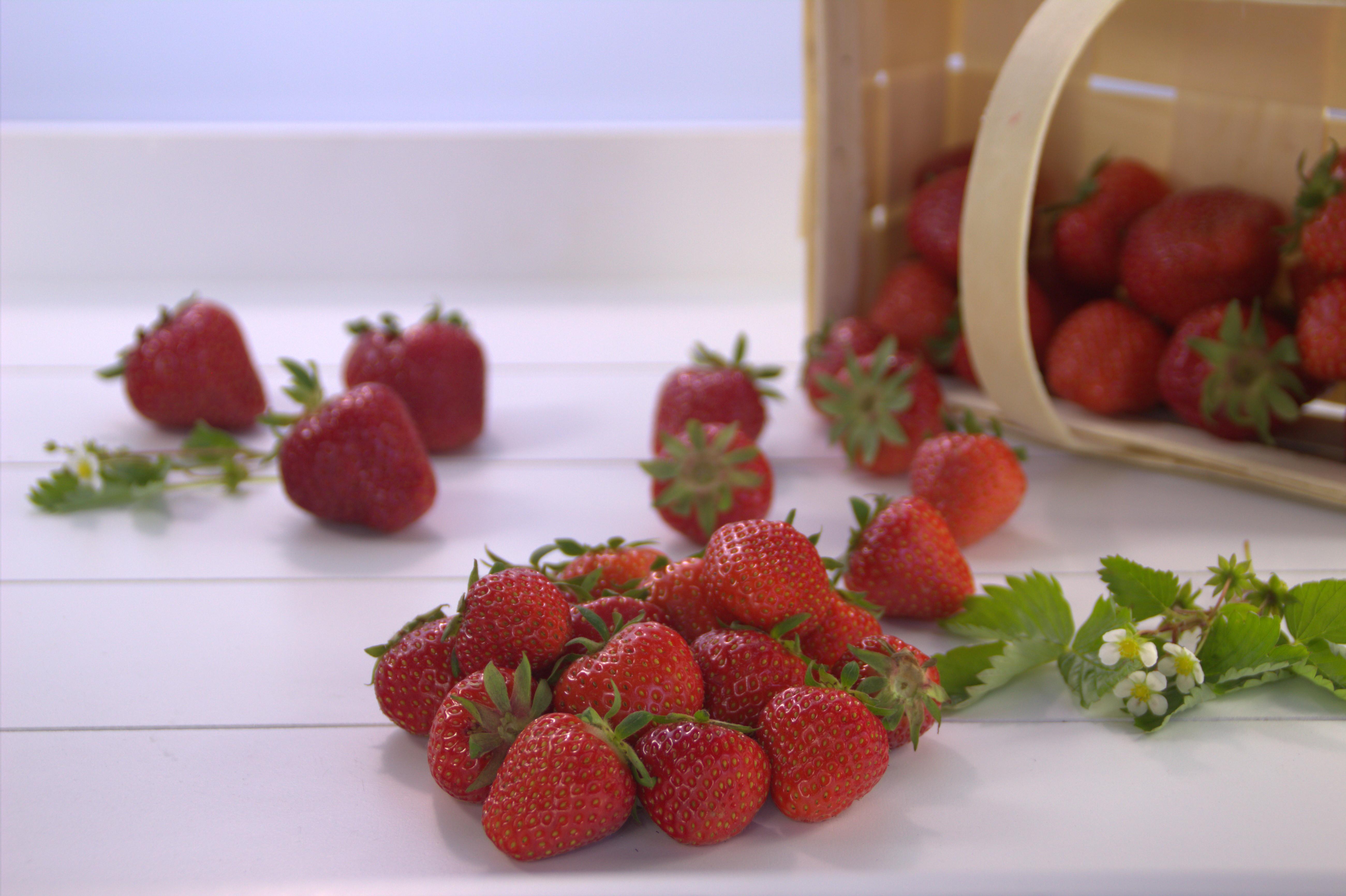 Melzer Erdbeeren 10 kg