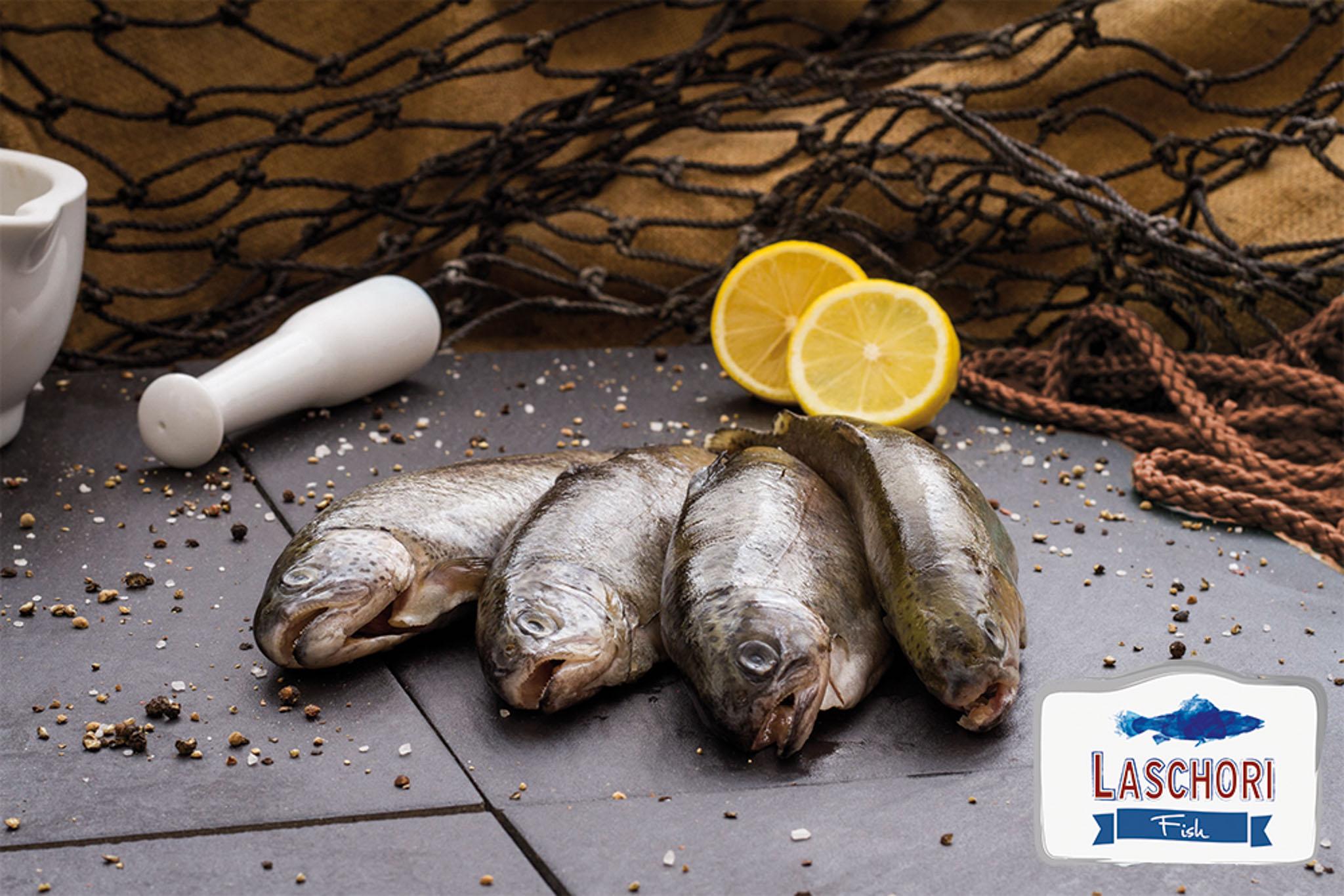 RARI Forellen ausgenommen 300-350 g